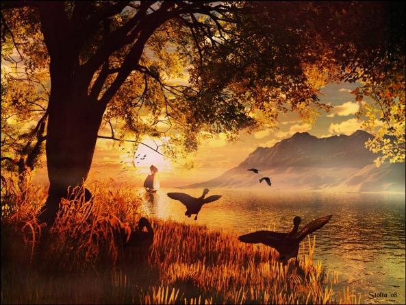 Alba bellissima, in un paesaggio da sogno, dorato, e gli uccelli che volano.